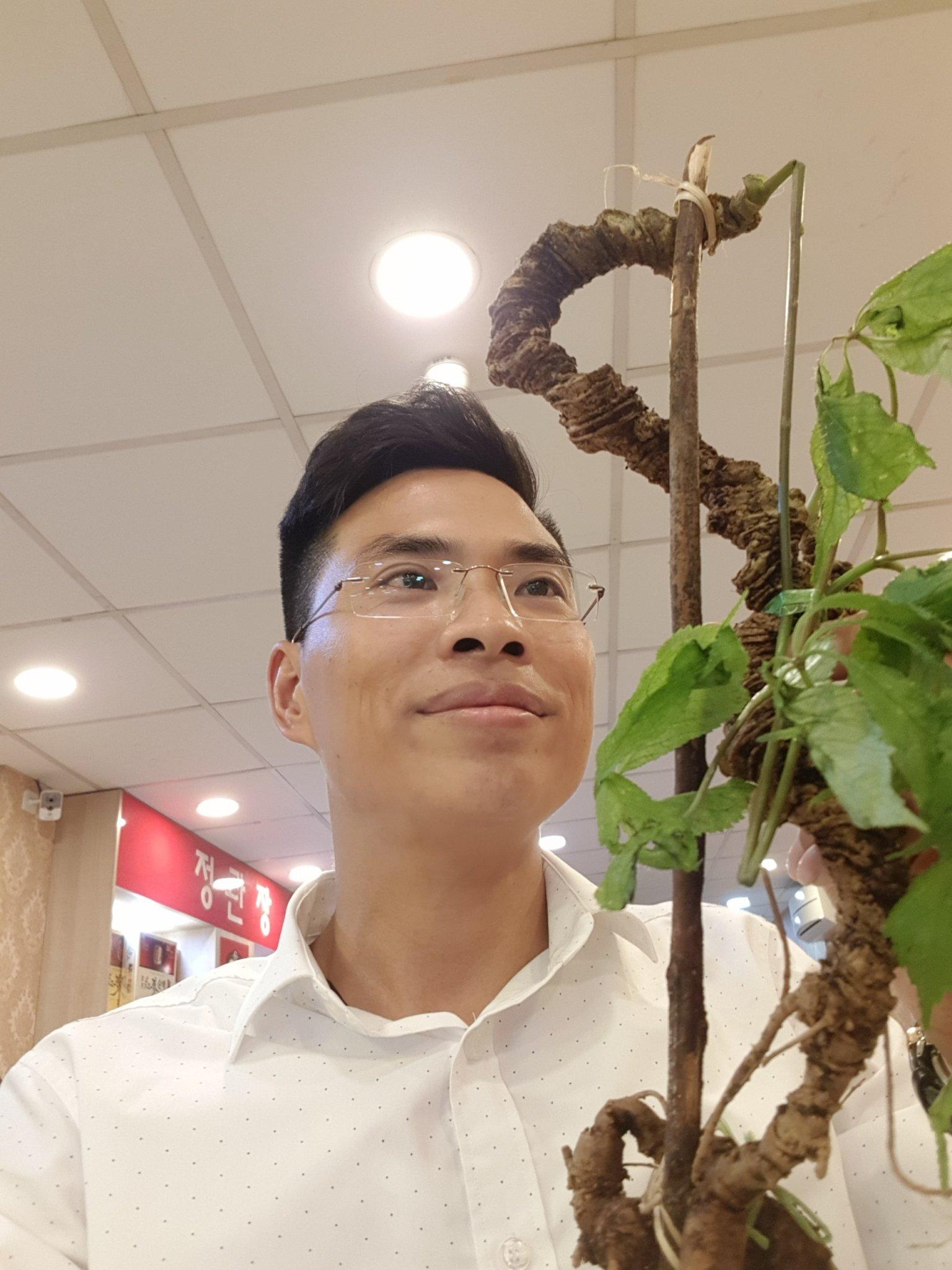Anh Đào Văn Quang - Người sở hữu bộ sưu tập sâm Ngọc Linh lên tới cả chục tỷ đồng