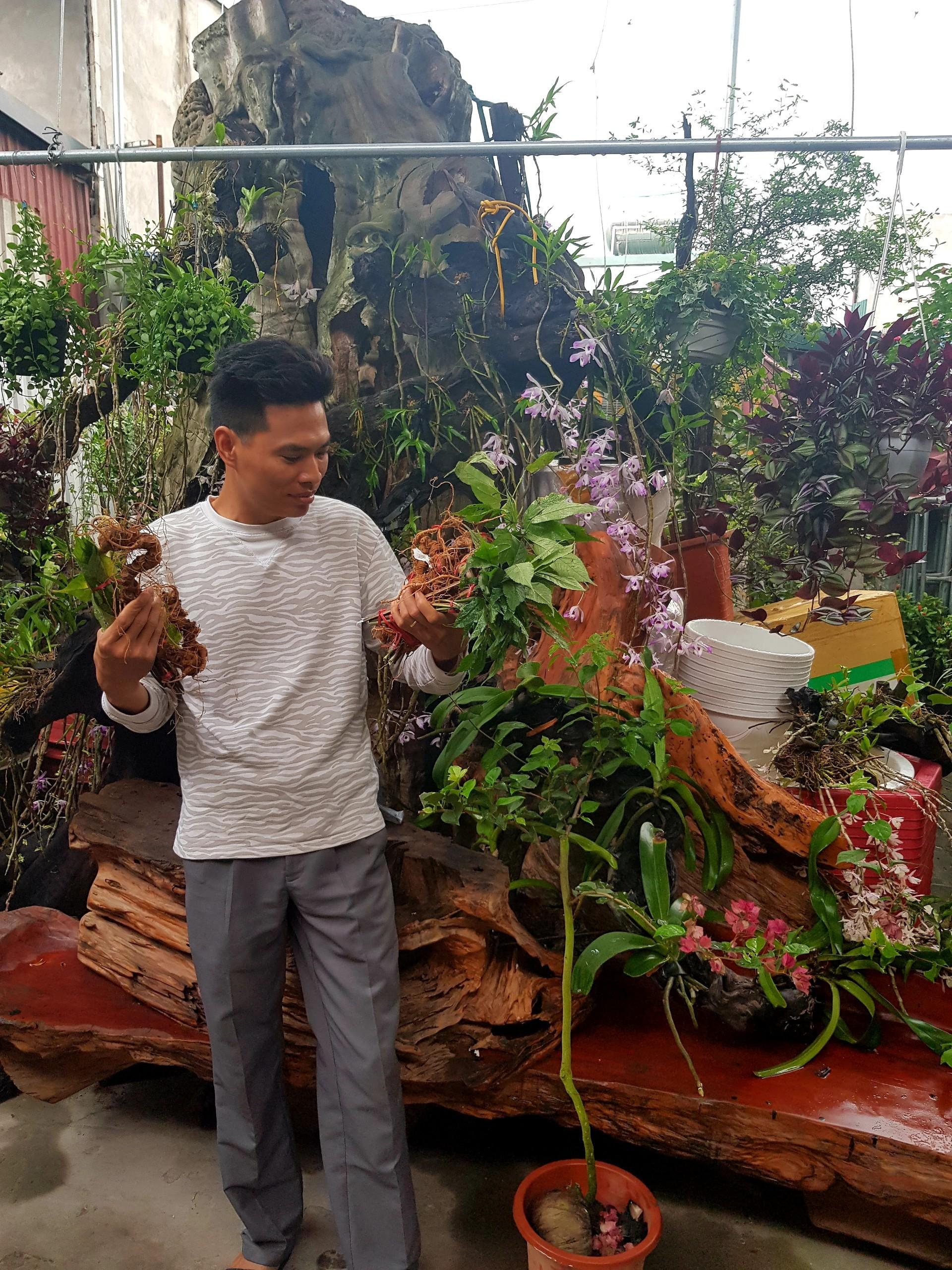 Vùng trông sâm Ngọc Linh lớn nhất tại Việt Nam