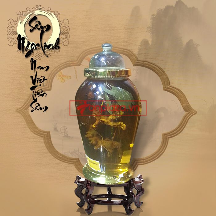 Bình ngâm sâm Ngọc Linh dáng cây tùng loại 9 lạng 1 củ