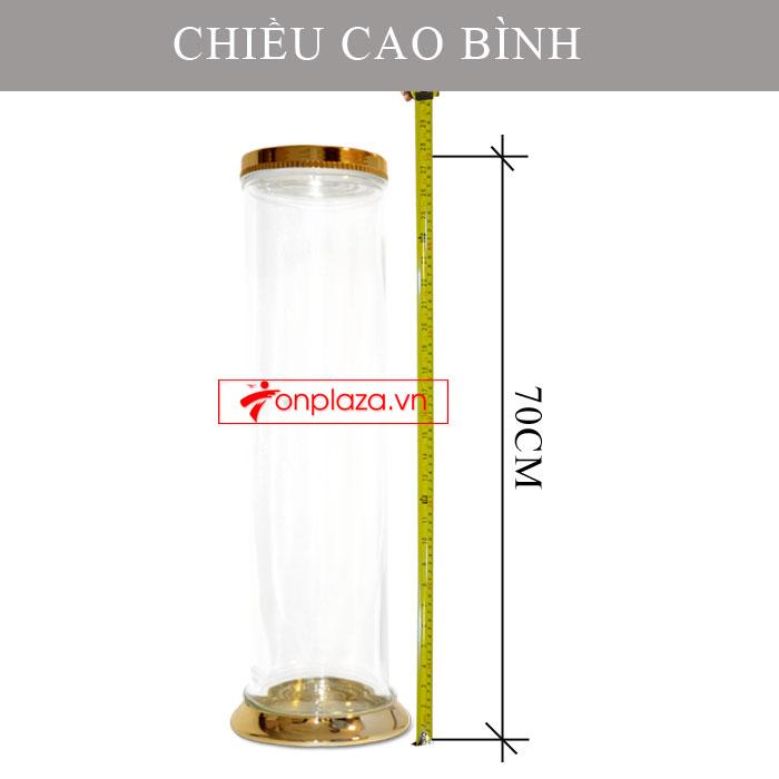 Bình ngâm sâm Ngọc Linh dung tích 20L (2.7kg) NS308 4
