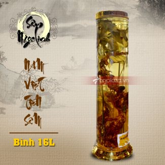 Bình ngâm sâm Ngọc Linh dung tích 20L (2.7kg) NS308