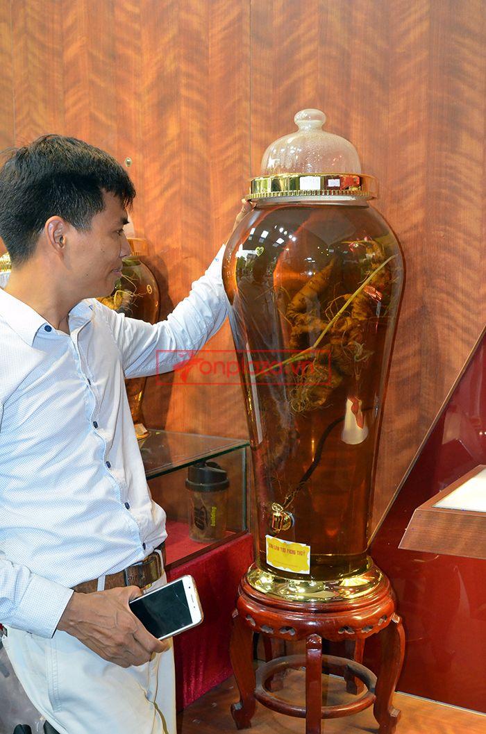 Bình ngâm sâm Ngọc Linh tự nhiên 1.65kg 2