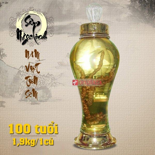 Bình  sâm 100 năm tuổi ( loại 2,1kg/ 1 củ sâm) NS189