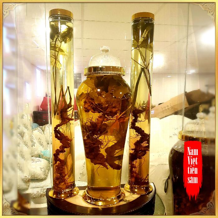 Bình sâm Ngọc Linh rừng tự nhiên 100%  41 lít