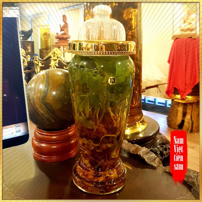 Bình sâm Ngọc Linh tự nhiên số 13 - 6 lít