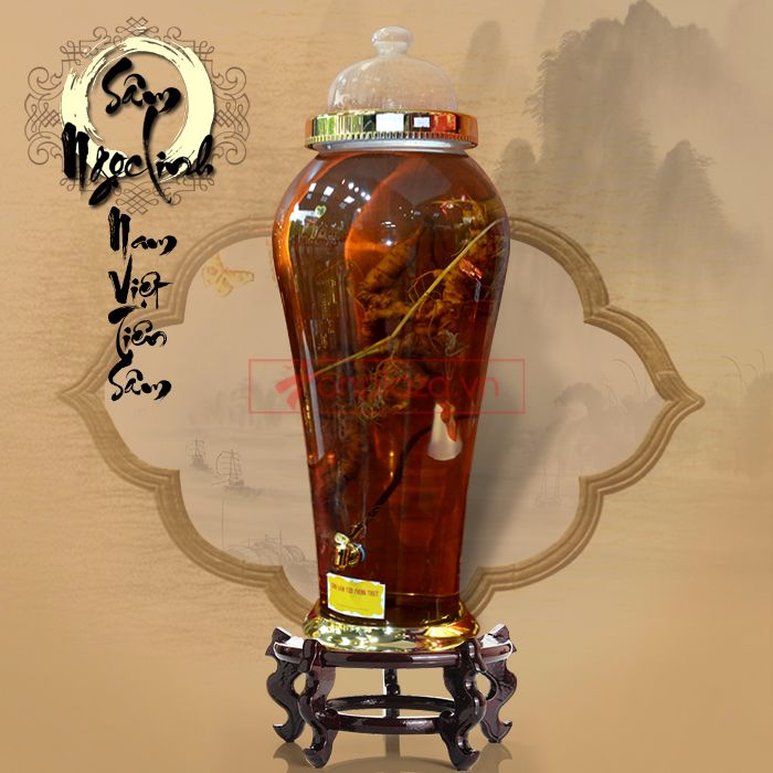 Bình ngâm sâm Ngọc Linh tươi 1.5kg