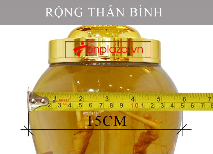 Bình sâm Ngọc Linh tươi củ nhỏ loại 3.5L NS394 6