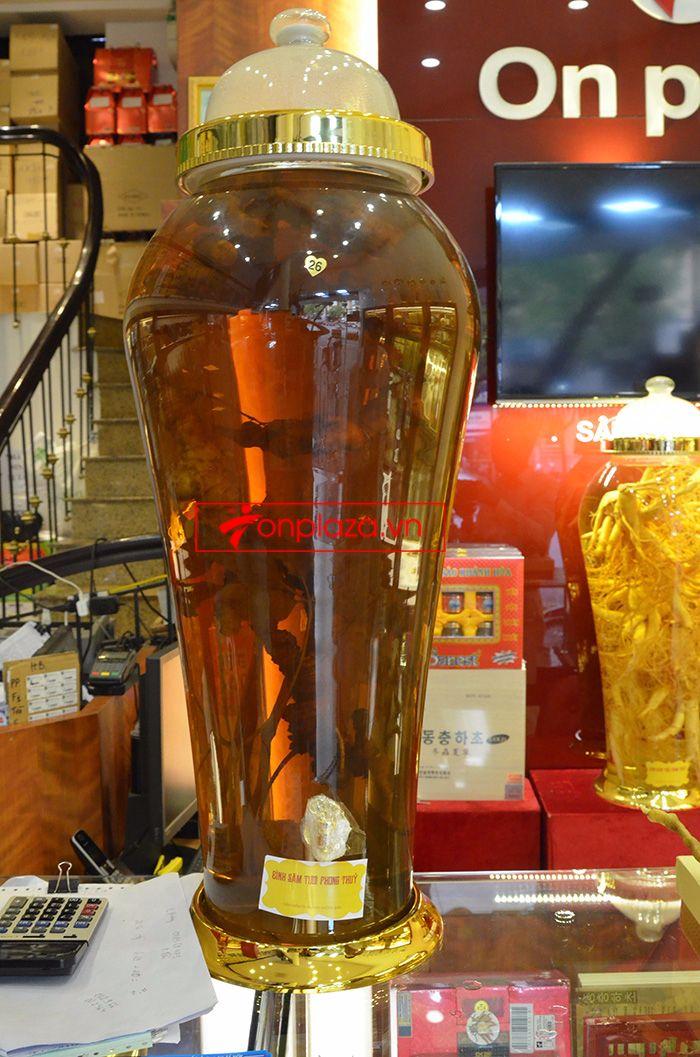 Bình sâm ngọc linh tươi loại 1.4kg/củ 2