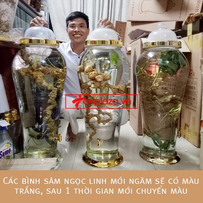 Một số hình ảnh chi tiết của sản phẩm Bình sâm Ngọc Linh tươi tự nhiên ngâm loại 1.9kg/củ 5