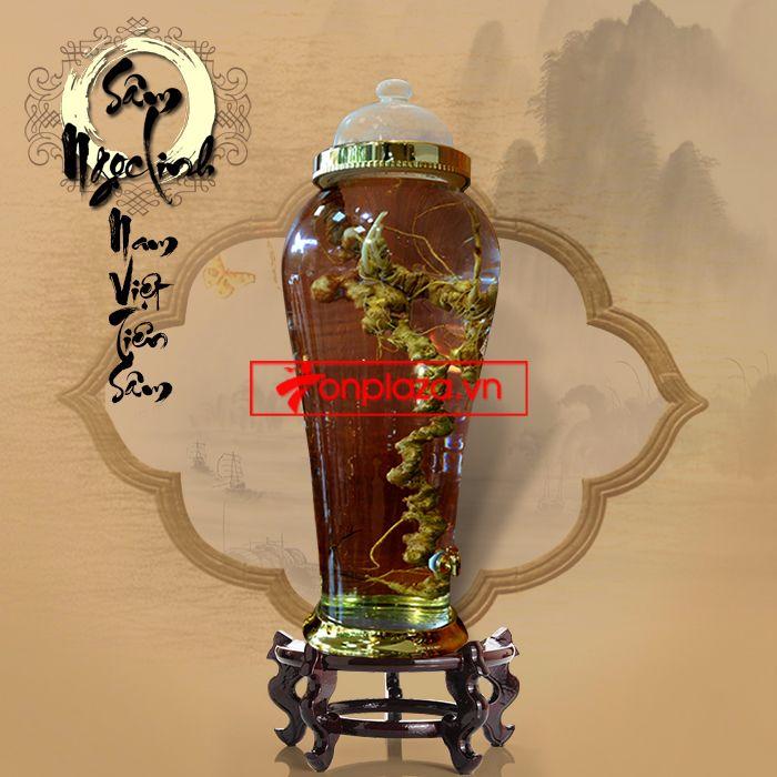 Một số hình ảnh chi tiết của sản phẩm Bình sâm Ngọc Linh tươi tự nhiên ngâm loại 1.9kg/củ