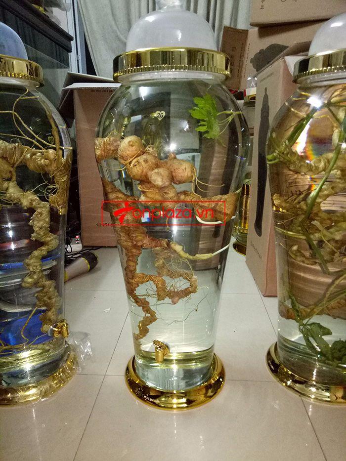 Một số hình ảnh về các sản phẩm sâm Ngọc Linh khác tại showroom 3