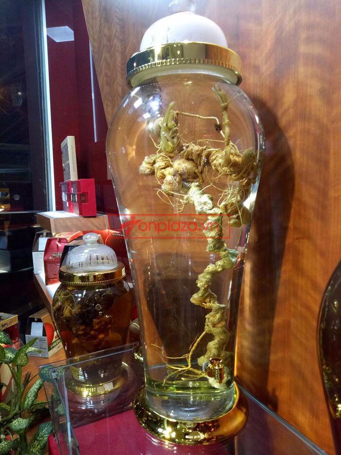 Một số hình ảnh về các sản phẩm sâm Ngọc Linh khác tại showroom 4