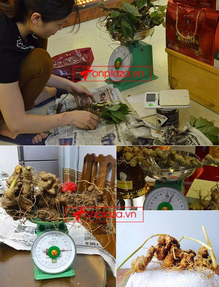 Một số hình ảnh về các sản phẩm sâm Ngọc Linh khác tại showroom 5