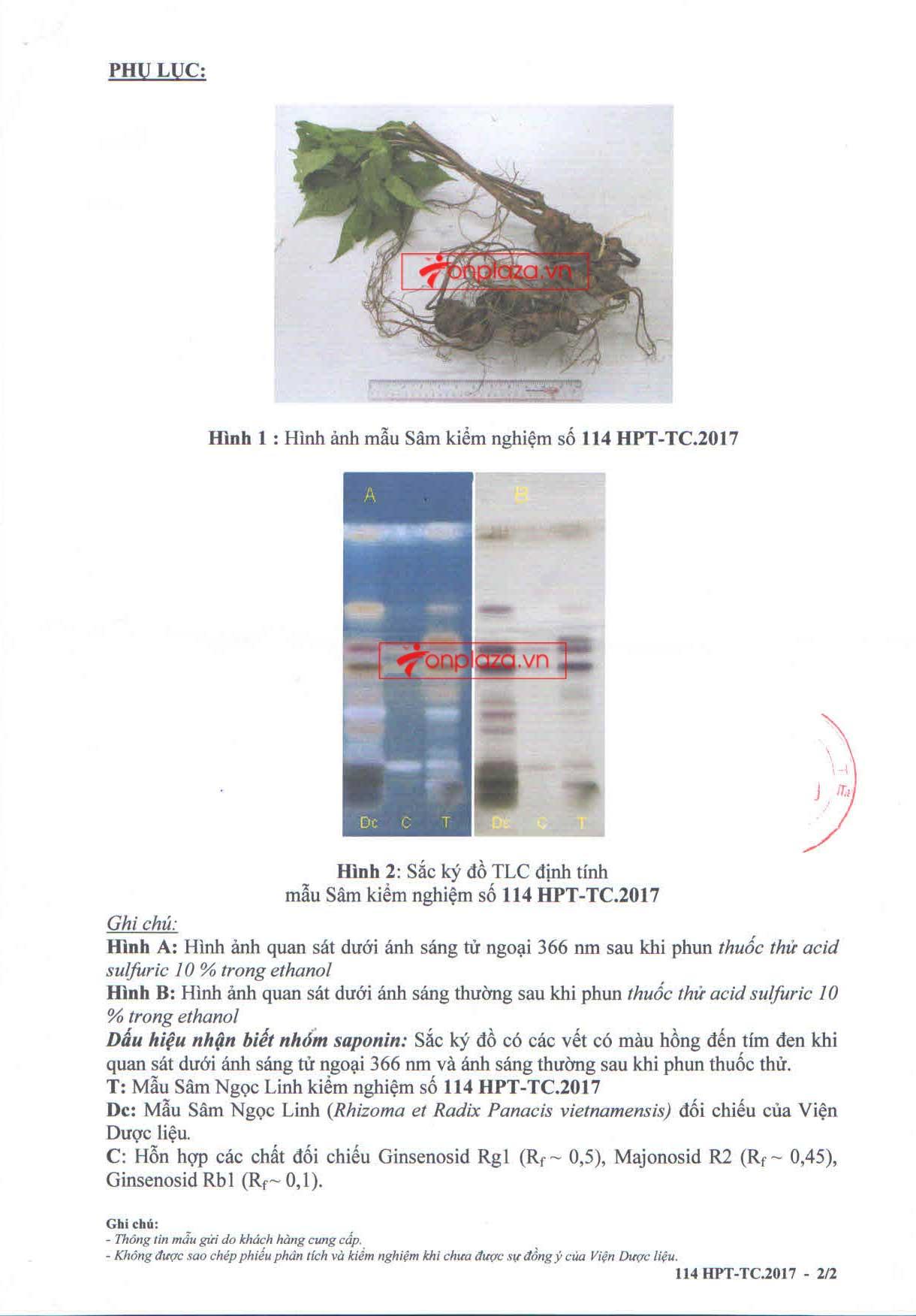 Kết quả phân tích và kiểm nghiệm sâm ngọc linh 2
