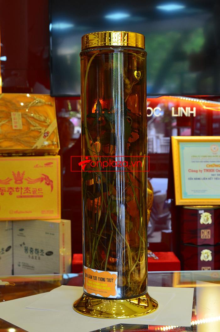 Các sản phẩm sâm ngọc linh khác tại showroom Onplaza 10