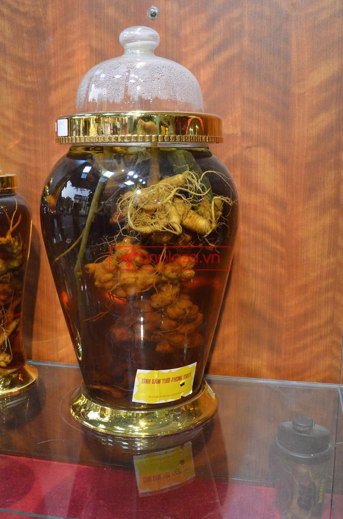 Các sản phẩm sâm ngọc linh khác tại showroom Onplaza 8