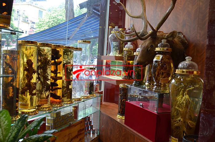 Một sồ hình ảnh sâm Ngọc Linh tại showroom Onplaza-Việt Pháp 3