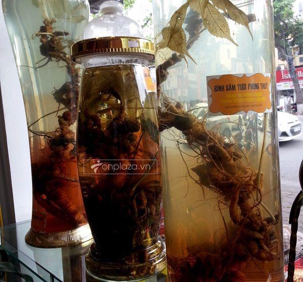 Lý do để rượu sâm Ngọc Linh trở thành thần dược của nam giới