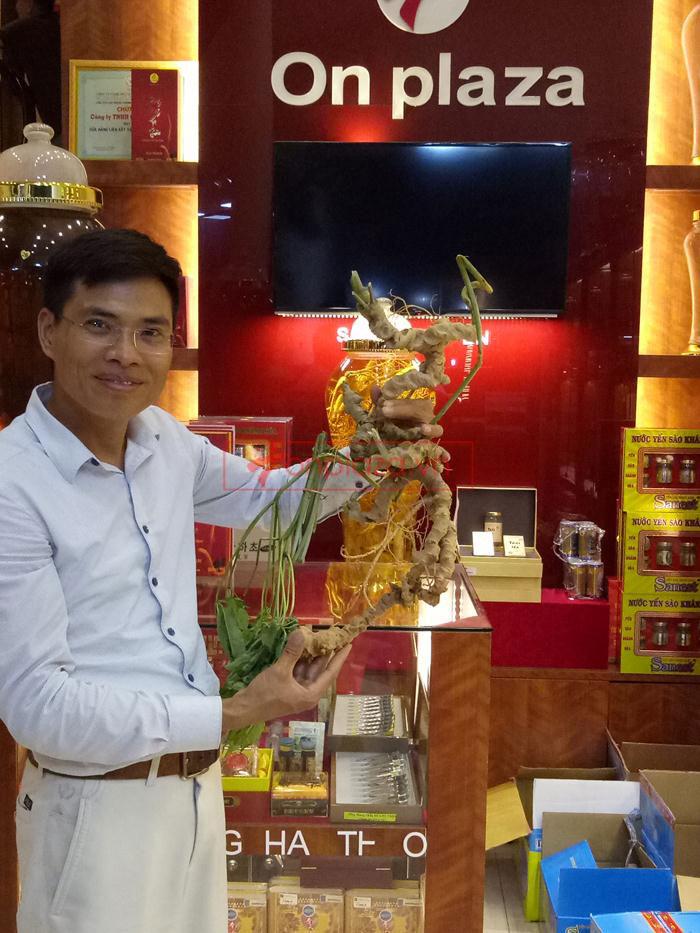 sâm ngọc linh tại onplaza Việt Pháp  9