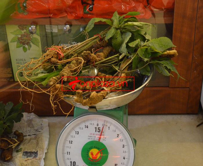 Sâm ngọc linh tự nhiên loại 10-20 củ 1 kg 4