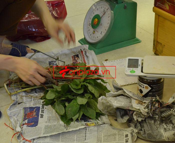 Sâm ngọc linh tự nhiên loại 10-20 củ 1 kg 8