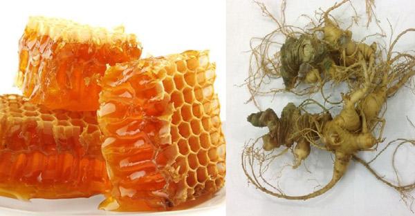Tác dụng sâm ngọc linh ngâm mật ong đối với sức khỏe