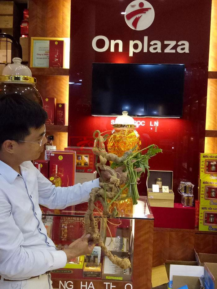 Một số hình ảnh trưng bày sâm ngọc linh tại showroom Onplaza Việt Pháp 7