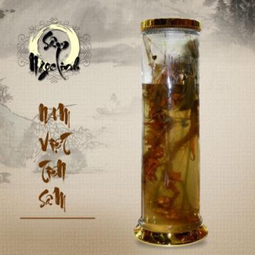 Bình sâm Ngọc Linh 16L NS309
