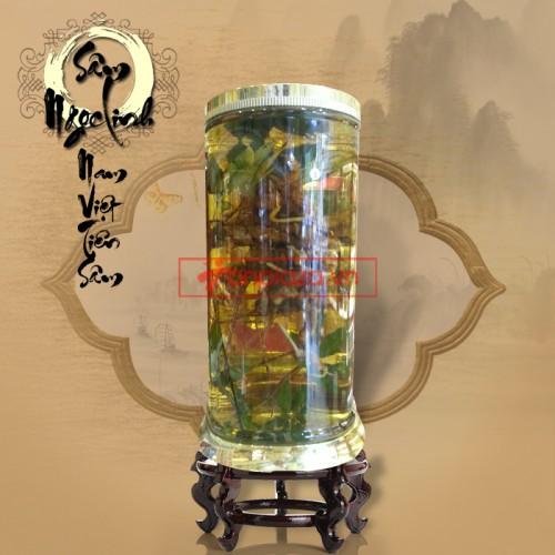 Bình sâm ngọc linh tự nhiên nặng 2.4kg/ 1 củ loại thượng hạng niên đại 150 năm tuổi